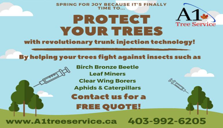 A1-Tree-Service-Calgary-1024x588